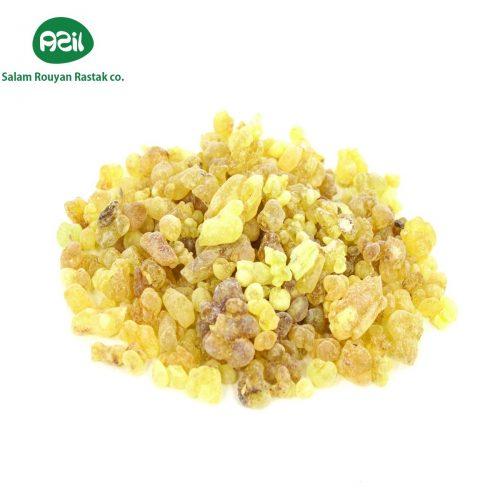 Azil Organic Pistacia Atlantica Gum