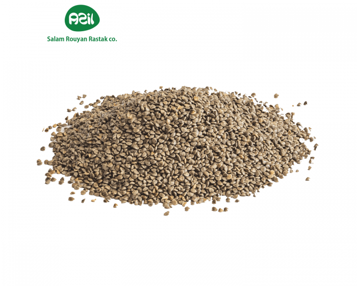 Azil Organic Clary sage seeds