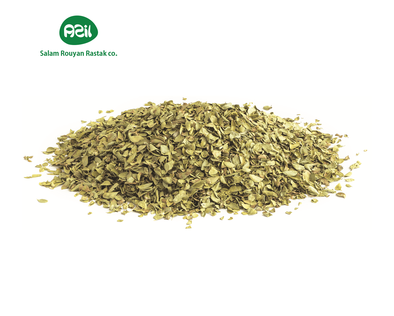 Thyme - Azil Organic Thyme
