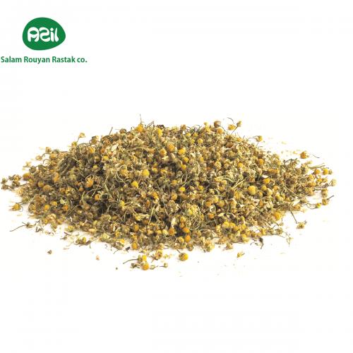 chamomile 1 500x500 - Azil Organic Chamomile