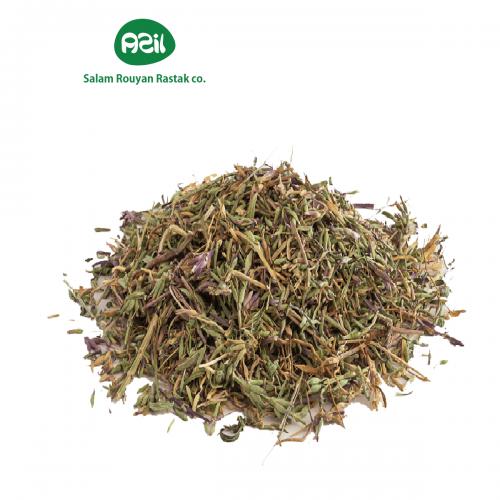 ziziphora 3 500x500 - Azil Organic Ziziphora