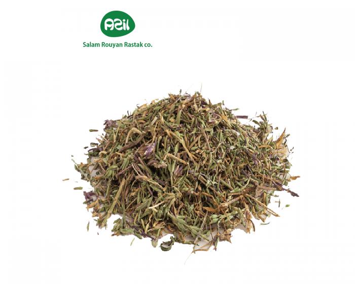 ziziphora 3 700x560 - Azil Organic Ziziphora