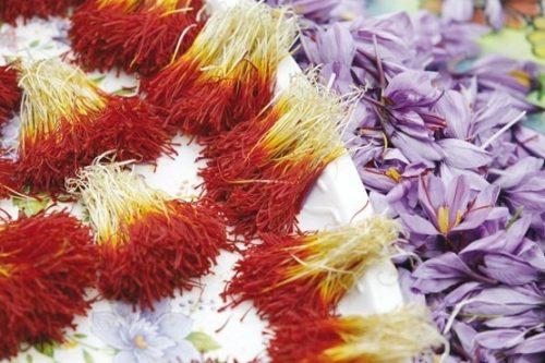 Azil Organic Bunch Saffron