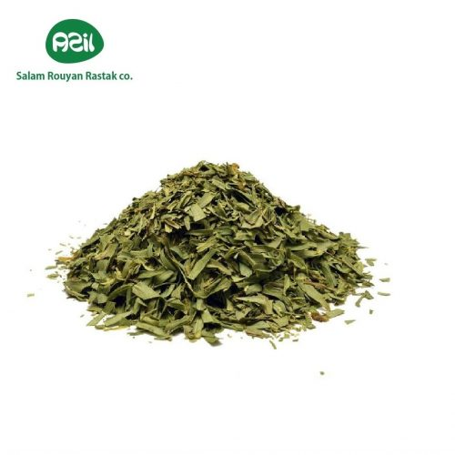 tarragon leaf 1 4 500x500 - Azil Tarragon