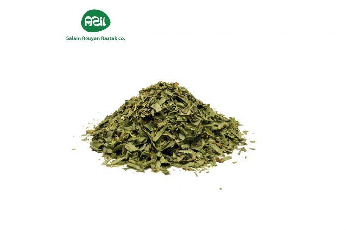 tarragon leaf 1 4 700x466 - Azil Tarragon