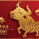 b25lY21zOmNmZWU1ZGJjLTUwNDItNGFkMS1iNTE0LTM5ZDU1ODk2M2U4YzozYjZlNDcyOS03NWVkLTQ5NDItYTZmMi01ZGUzMTU2YzI3NTQ 2 150x150 - Happy Chinese New Year 2021 / 保持健康!