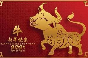 b25lY21zOmNmZWU1ZGJjLTUwNDItNGFkMS1iNTE0LTM5ZDU1ODk2M2U4YzozYjZlNDcyOS03NWVkLTQ5NDItYTZmMi01ZGUzMTU2YzI3NTQ 2 - Happy Chinese New Year 2021 / 保持健康!