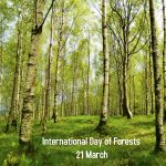 International forest day 1 150x150 - International Day of Forests