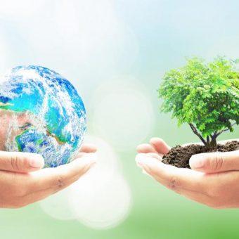 earth tree 340x340 - Earth Day 2021