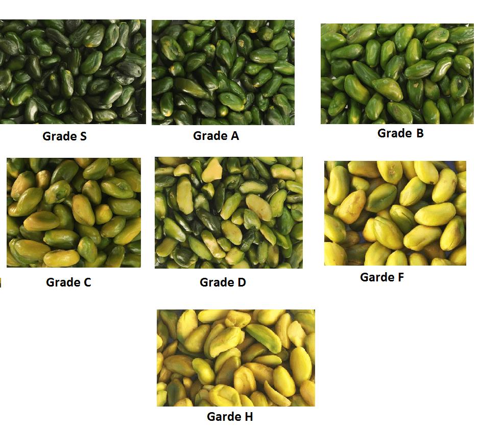 Green Pistachio - Organic Green Peeled Pistachio Kernels
