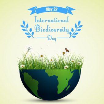 green grass flowers inside earth 43605 1411 340x340 - International Day for Biological Diversity