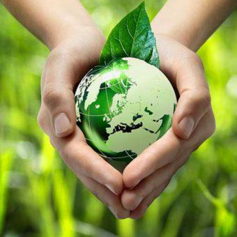 Image.aspx  340x340 - World Environment Day 2021