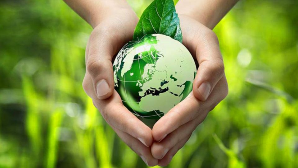 Image.aspx  960x540 - World Environment Day 2021