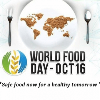 word food day 1 1 340x340 - Word food day